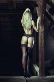 Sensual woman posing on timber Stock Photos