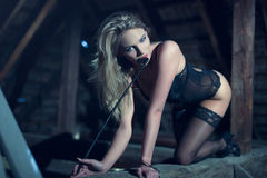 Sensual woman in underwear and whip crawling on timber Royalty Free Stock Images