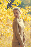 Sensual woman in warm sunny autumn day Royalty Free Stock Image