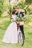 Sensual young newlywed couple posing in park with fancy decorated bicycle Stock Photos
