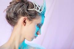 Ice queen makeup stock image