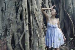 Sensuality at banyan Stock Images