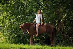 Sensuele jonge schoonheidsveedrijfster die een paard berijden Royalty-vrije Stock Foto's