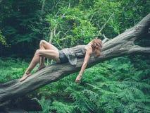 Sensuele jonge vrouw op gevallen boom in bos Stock Foto's