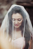 Sensuele mooie donkerbruine bruid die en onder haar ve glimlachen verbergen Stock Foto's