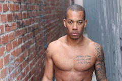 Sensuous African American man shirtless with copy space Stock Images