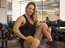 Sensuous Strength in the Gym Royalty Free Stock Images