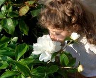 Senta l'odore dei fiori immagini stock libere da diritti