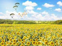 Senta libero per volare, amivi con cuore Fotografia Stock