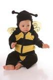 Sentada de la abeja del bebé Imagen de archivo libre de regalías