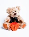 Sentada del oso del peluche Foto de archivo libre de regalías