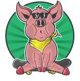 Sentada del patinador del cerdo Fotos de archivo