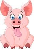 Sentada feliz del cerdo de la historieta Foto de archivo libre de regalías