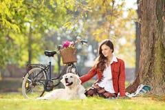 Sentada femenina hermosa en una hierba con su perro en un parque Fotografía de archivo