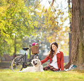 Sentada femenina hermosa en una hierba verde con su perro en un parque Imagen de archivo