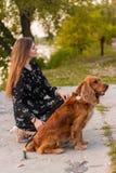 Sentada y juego de la mujer con su perro perro que camina en parque verde al aire libre fotografía de archivo