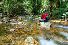 Sente-se em um ribeiro do córrego da rocha, angra do rio da montanha que flui sobre a rocha foto de stock