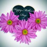 Dia de mães feliz Fotos de Stock