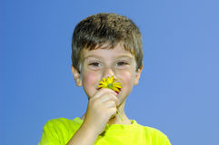 Sentez les fleurs Photos libres de droits
