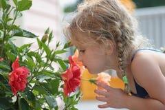 Sentez les fleurs Photo libre de droits