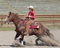 Sentido de cavalo Imagens de Stock Royalty Free