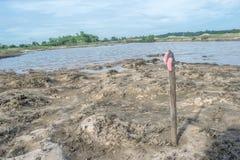 Sentido do ponto ensolarado da praia quando lagoas do nível de maré baixa em Tailândia Fotografia de Stock Royalty Free