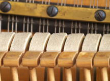 Sentido em martelos do piano. Imagens de Stock
