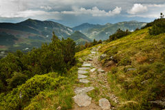 Sentier de randonnée Photos stock