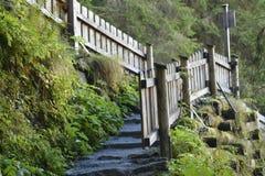 Sentier de randonnée avec des escaliers photo stock