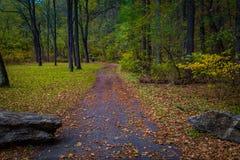 Sentier de randonnée coloré en automne dans le comté de Lancaster Images libres de droits