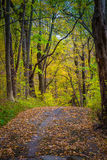 Sentier de randonnée coloré en parc du comté de Lancaster Photographie stock libre de droits