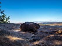 Sentier de randonnée d'algonquin Images stock