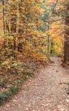 Sentier de randonnée dans l'automne Photographie stock