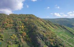 Sentier de randonnée de vin rouge près de Mayschoss, vallée d'Ahr photos stock