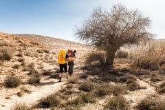Sentier de randonnée de deux randonneurs près d'arbre, désert du Néguev, Israël Photo stock