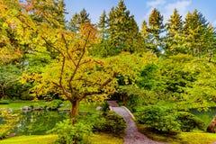 Sentier de randonnée en parc, à travers le pont par un étang avec la pierre photo libre de droits