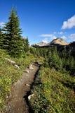 Sentier de randonnée Helen Lake Cirque Peak image stock