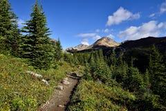 Sentier de randonnée Helen Lake Cirque Peak image libre de droits