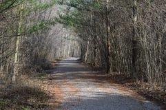 Sentier de randonnée menant la manière Photo stock