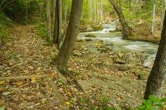 Sentier de randonnée par la crique courue par hurlement image libre de droits