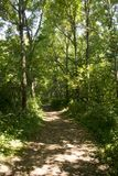 Sentier de randonnée sur l'île moyenne image stock