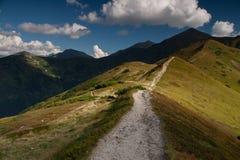 Sentier de randonnée sur l'arête herbeuse de montagne photo stock
