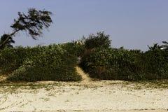 Sentier piéton à la porte sur la plage de paradis Image stock