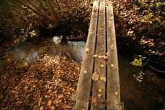 Sentier piéton à travers au-dessus d'un flot Photo libre de droits