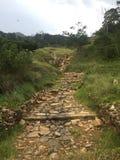 Sentier piéton avec la montagne Photos libres de droits