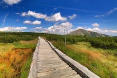 Sentier piéton avec Snezka en montagnes de Krkonose Photographie stock libre de droits