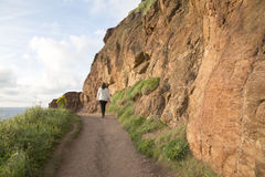 Sentier piéton côtier de chaussée de Giants ; Comté Antrim ; Irelan du nord image stock
