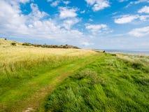 Sentier piéton dans Het Oerd de réserve naturelle à la côte de Waddensea de l'île occidentale Ameland, Pays-Bas de Frisian image stock