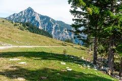 Sentier piéton dans les alpes Photographie stock libre de droits