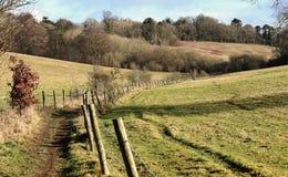 Sentier piéton dans les collines de Chiltern, R-U Image stock